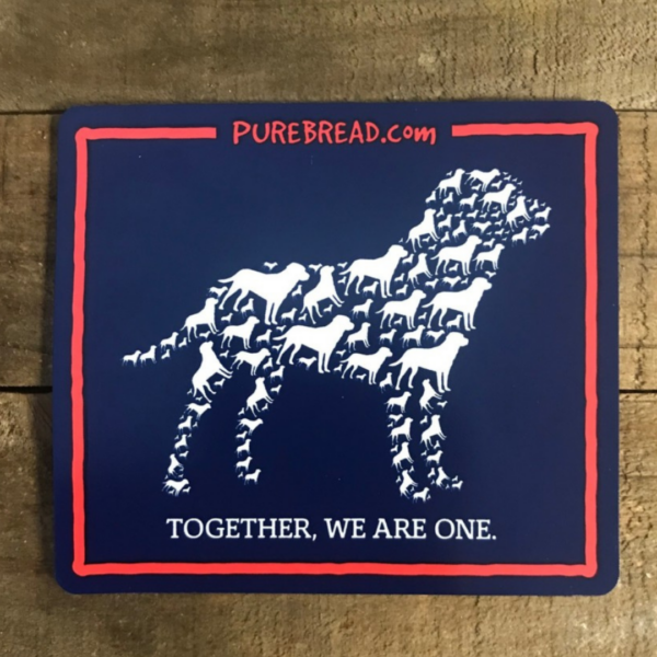 Together We Are One Car Magnet 2021